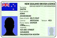 drivers licence nz