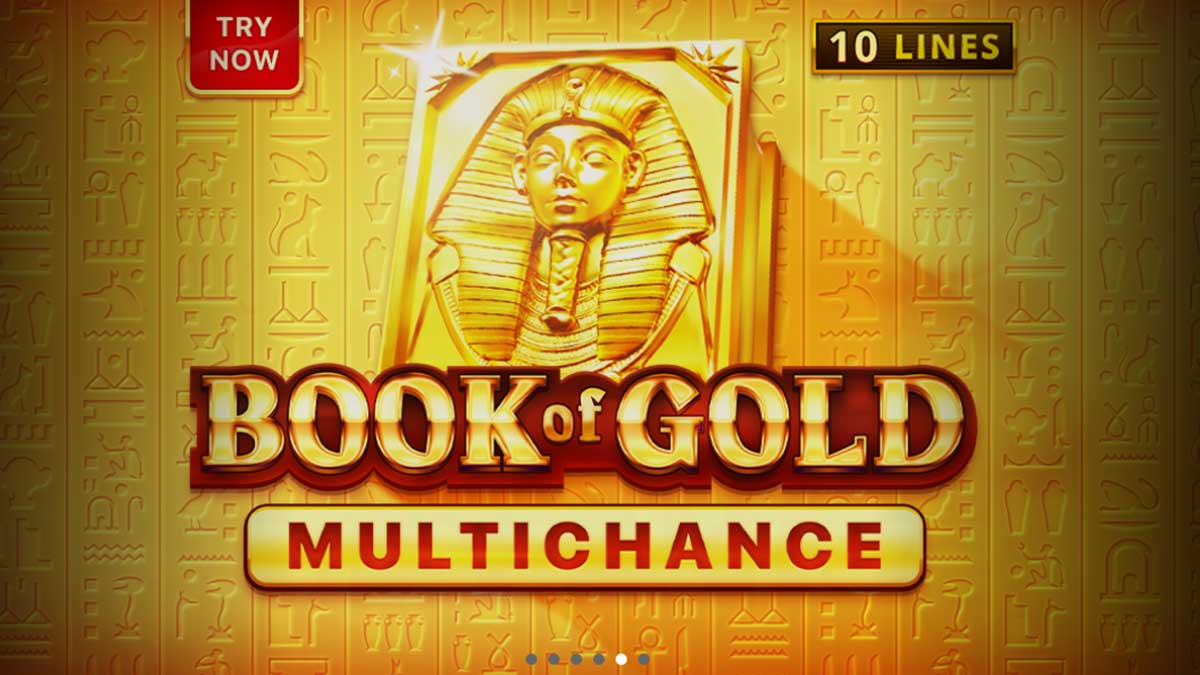 Book of Gold slot game by Playson